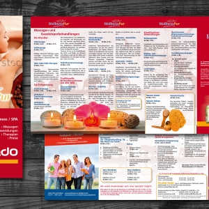"""Wellness Pur<br /><small class=""""pr_small"""">DinLang Flyer</small>"""