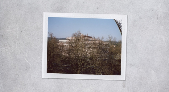 Style Apartment Polaroid